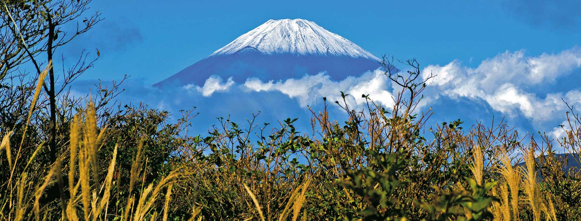 Japonia - Haiku o wschodzącym słońcu