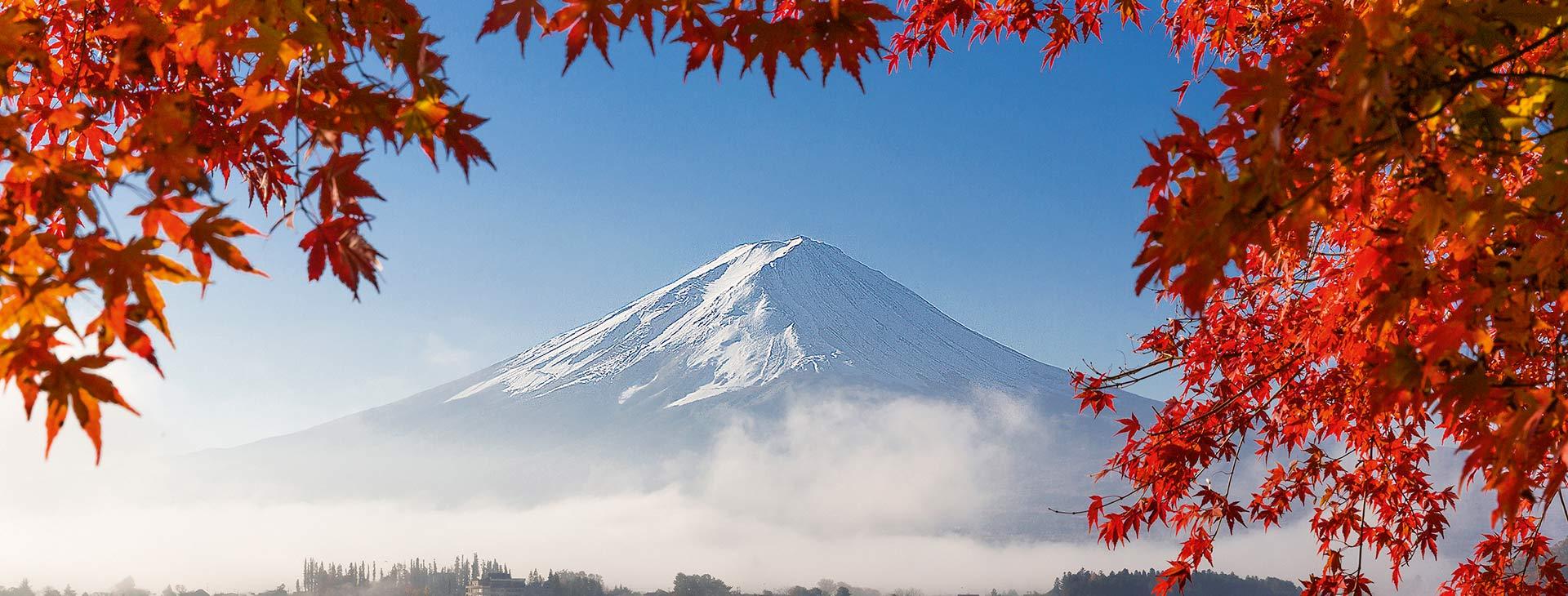 Japonia - w krainie gejsz i samurajów de luxe