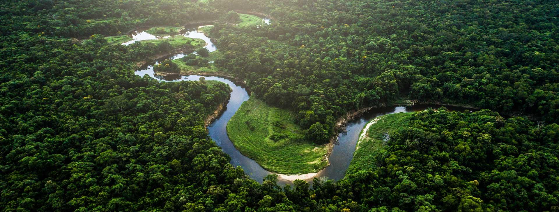 Nieokiełznana przyroda - Manaus, Iguacu Brazylia Wyc. objazdowe